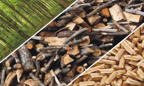 earet biomass